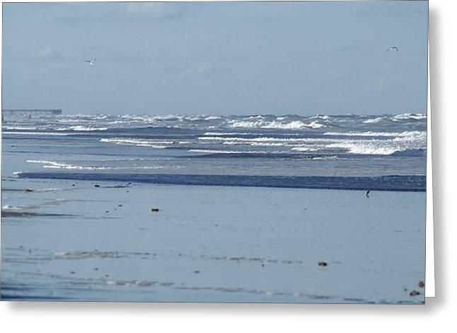Water Bird Greeting Cards - Misty Stroll on the Beach Greeting Card by Patricia Twardzik