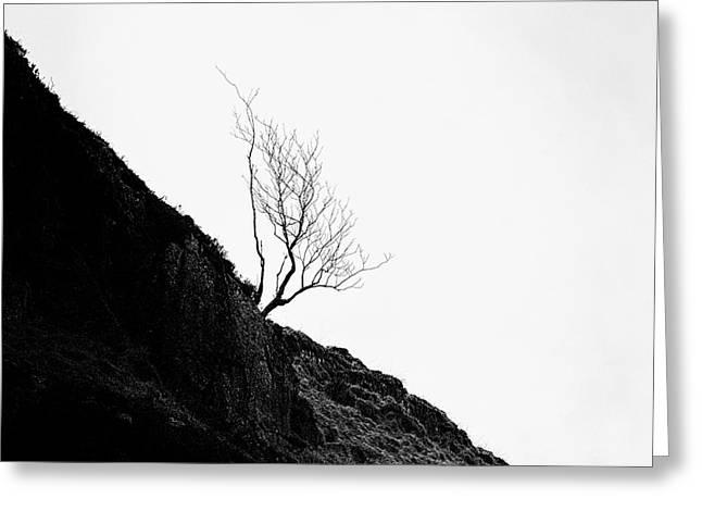 misty tree glen etive Greeting Card by John Farnan