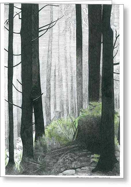 Misty. Drawings Greeting Cards - Misty Woods Greeting Card by Paul Shafranski