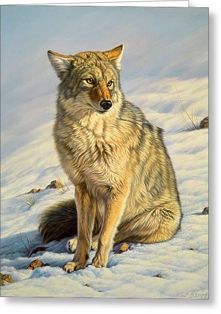 Wildlife Greeting Cards - Misunderstood Greeting Card by Paul Krapf