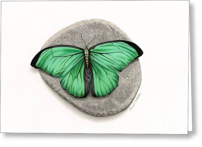 White River Drawings Greeting Cards - Mito Awareness Butterfly- A Symbol Of Hope Greeting Card by Sarah Batalka