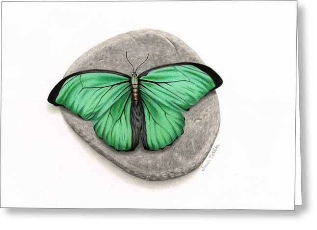 Rocks Drawings Greeting Cards - Mito Awareness Butterfly- A Symbol Of Hope Greeting Card by Sarah Batalka