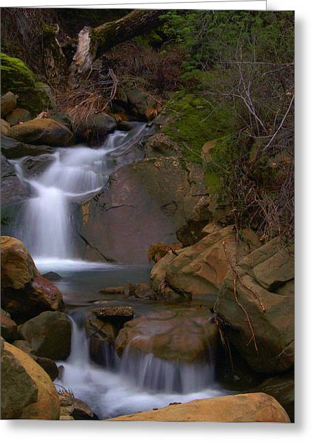 Water Flowing Greeting Cards - Mix Canyon Creek Greeting Card by Bill Gallagher