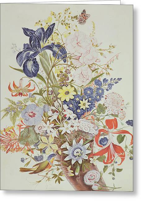 Larkspur Greeting Cards - Mixed flowers in a cornucopia Greeting Card by Thomas Robins