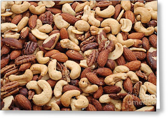 Filbert Greeting Cards - Mixed Nuts Greeting Card by Andee Design