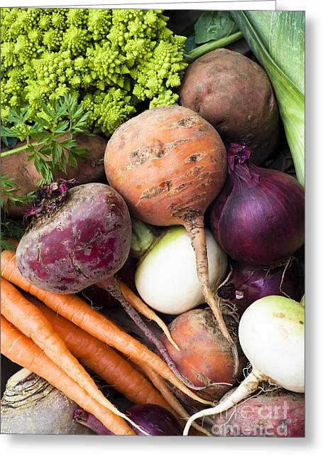 Vulgaris Greeting Cards - Mixed Veg Greeting Card by Anne Gilbert
