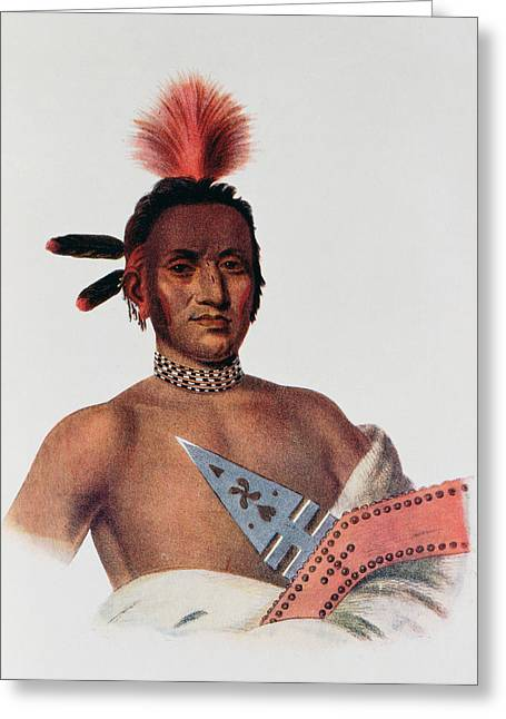 Necklace Photographs Greeting Cards - Moa-na-hon-ga Or Great Walker, An Iowa Chief, 1824, Illustration From The Indian Tribes Of North Greeting Card by Charles Bird King