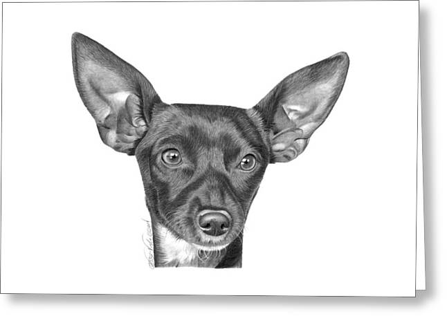 Chihuahua Artwork Greeting Cards - Mocha -036 Greeting Card by Abbey Noelle
