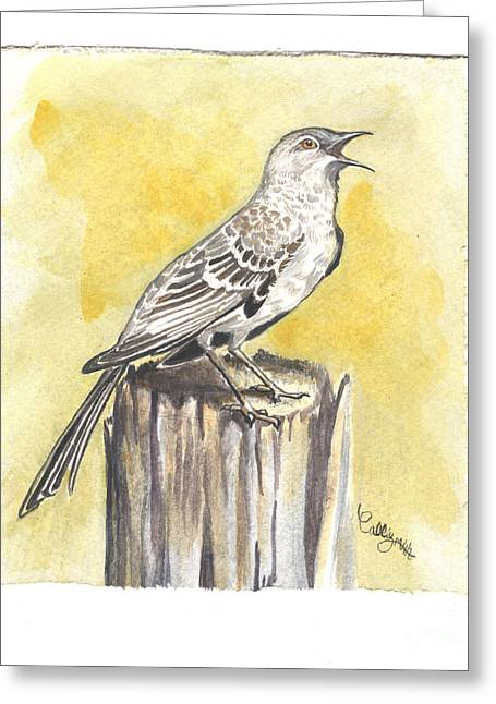 Bird Art Greeting Cards - Mockingbird Greeting Card by Callie Smith