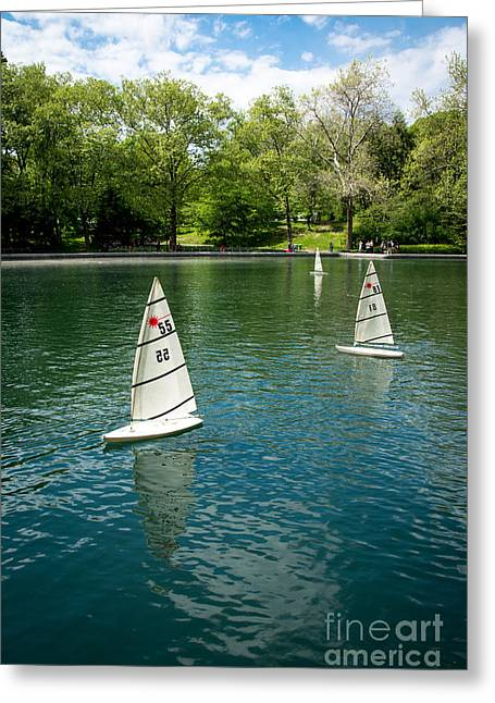 Models Greeting Cards - Model Boats on Conservatory Water Central Park Greeting Card by Amy Cicconi