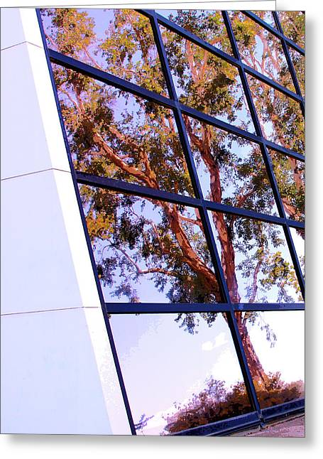 Tress Prints Greeting Cards - MODERN REFLECTION Palm Springs Greeting Card by William Dey