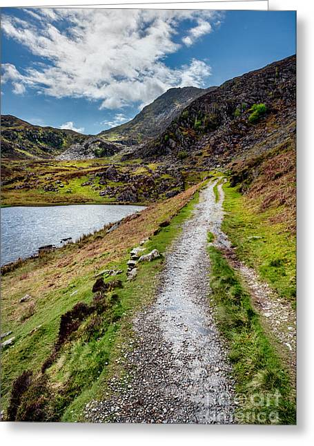 Rock Spring Trail Greeting Cards - Moel Siabod Greeting Card by Adrian Evans