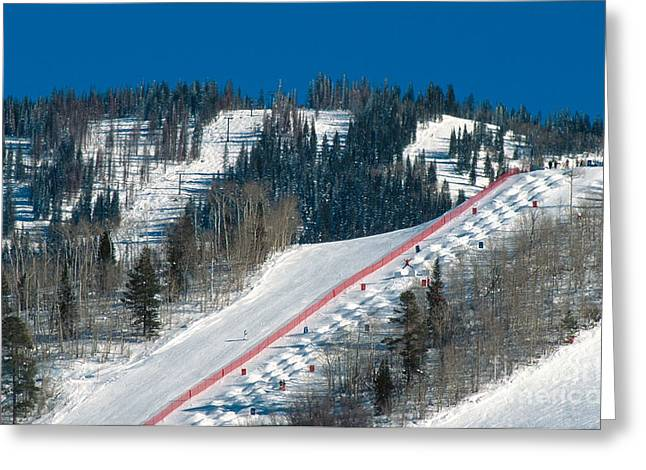 Freestyle Skiing Greeting Cards - Mogul Competition Greeting Card by Chris Selby