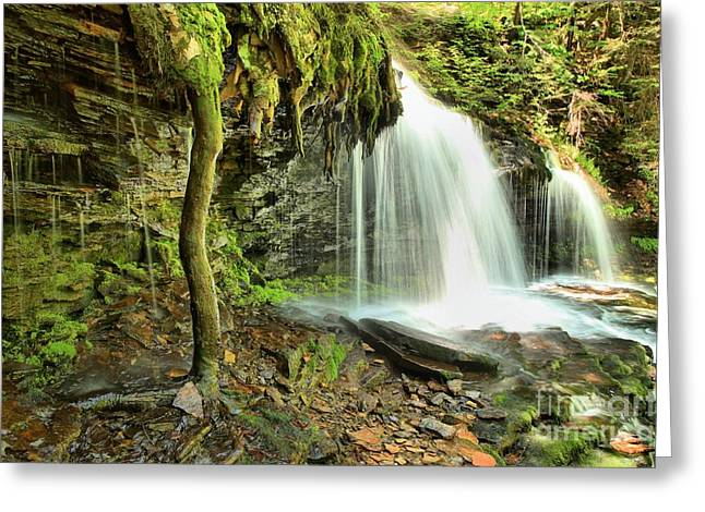 Mohawk Park Greeting Cards - Mohawk Falls At Ricketts Glen Greeting Card by Adam Jewell