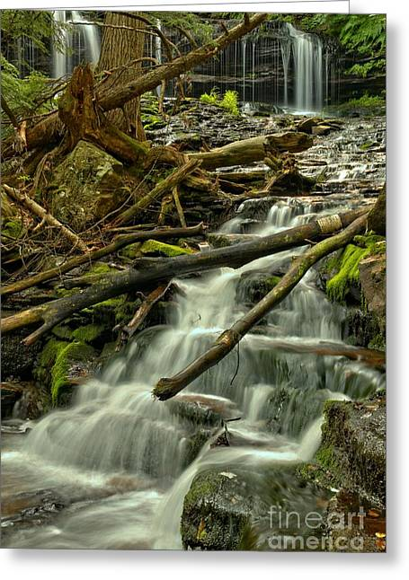 Mohawk Park Greeting Cards - Mohawk Falls Portrait Greeting Card by Adam Jewell