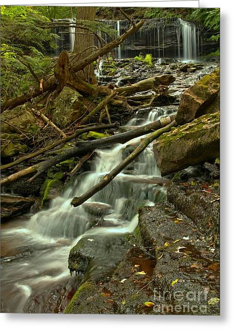 Mohawk Park Greeting Cards - Mohawk Streaming Down Greeting Card by Adam Jewell