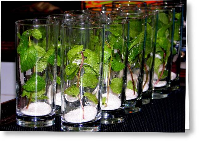 The Cocktail Hour Greeting Cards - Mojitos in the Making Greeting Card by Karen Wiles
