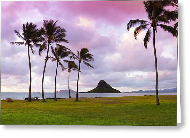 Landscape Framed Prints Greeting Cards - Mokolii Palms Greeting Card by Sean Davey