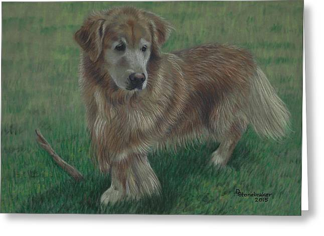 Golden Drawings Greeting Cards - Molly and Her Stick Greeting Card by Debbie Stonebraker