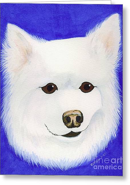 Lori Ziemba Greeting Cards - Molly the American Eskimo Dog Greeting Card by Lori Ziemba