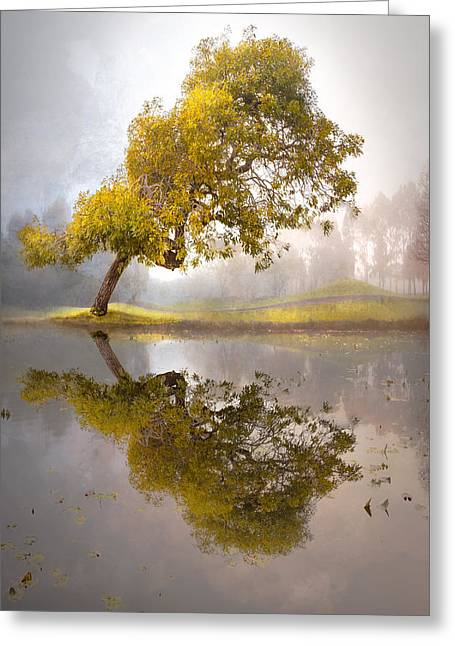 Foggy Beach Greeting Cards - Moment of Reflection Greeting Card by Debra and Dave Vanderlaan
