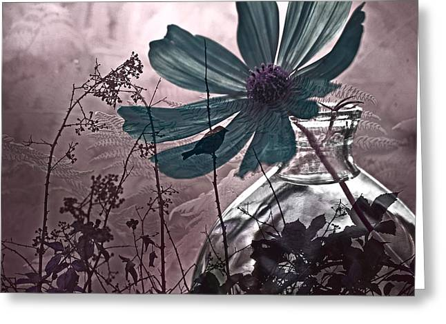 Photo Montage Greeting Cards - Moments Recaptured Greeting Card by Bonnie Bruno