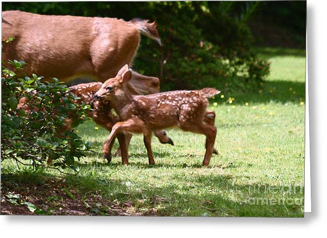 Mommy Is Here Time To Run Greeting Card by Kym Backland
