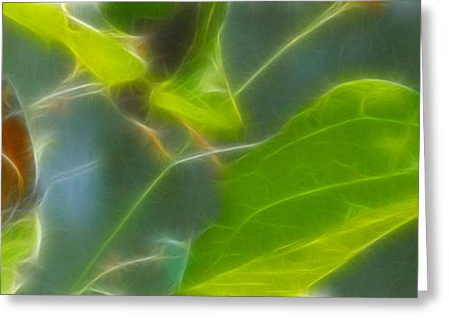 Gingrich Photography Digital Art Greeting Cards - Monarch-7-Fractal Greeting Card by Gary Gingrich Galleries