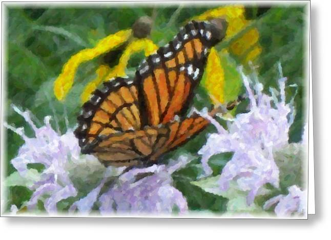 Monarch Abstract Greeting Card by Gerian Dodds