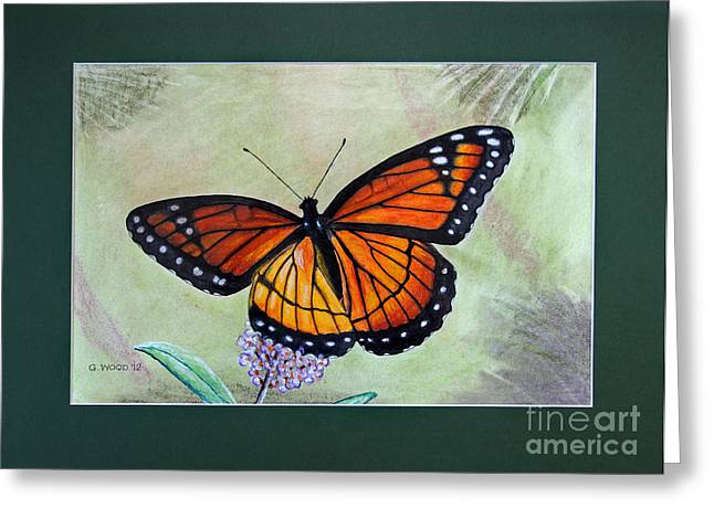 Antenna Pastels Greeting Cards - Viceroy Butterfly by George Wood Greeting Card by Karen Adams