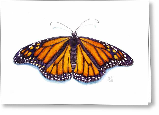 Catherine White Paintings Greeting Cards - Monarch Butterfly Greeting Card by Catherine Noel