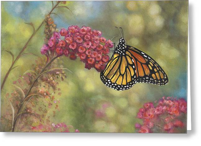 Zaccheo Greeting Cards - Monarch Butterfly Greeting Card by John Zaccheo