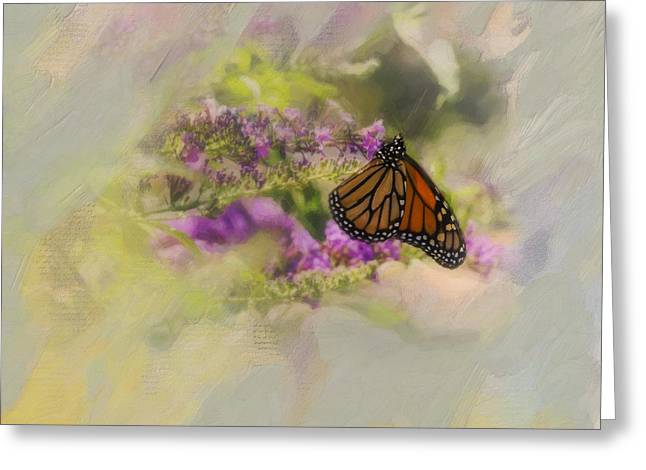 Diane Schuster Greeting Cards - Monarch Butterfly On Butterfly Bush Greeting Card by Diane Schuster