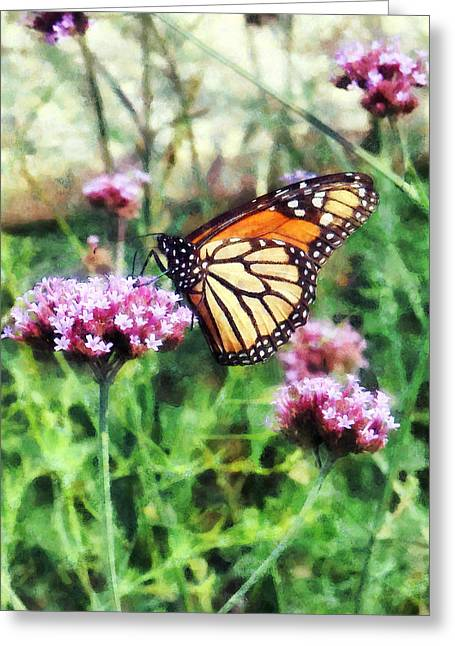 Monarch Butterfly Greeting Cards - Monarch Butterfly on Pink Lantana Greeting Card by Susan Savad