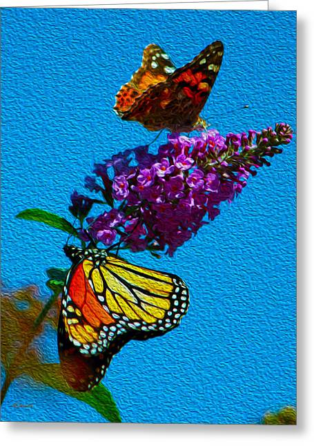 African-americans Greeting Cards - Monarch No.6 Greeting Card by Albert Stewart