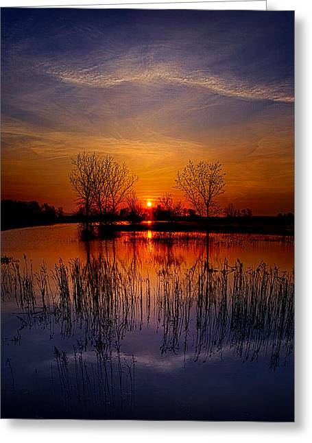 Geographic Greeting Cards - Monday Morn Greeting Card by Phil Koch