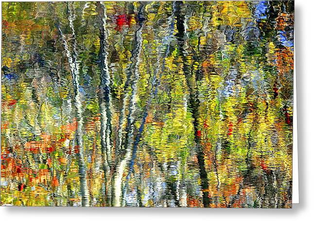 Reflecting Water Greeting Cards - Monet Lives On Greeting Card by Frozen in Time Fine Art Photography
