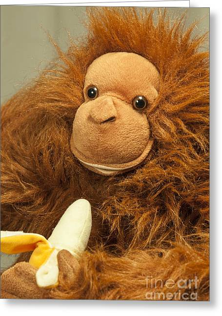 Bananas.ape Greeting Cards - Monkey Business Greeting Card by Donald Davis