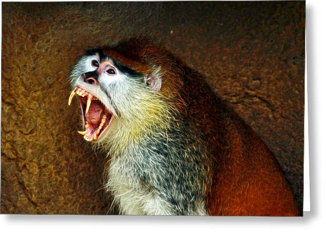 The Tiger Hunt Greeting Cards - Monkey Fangs Greeting Card by Steve McKinzie