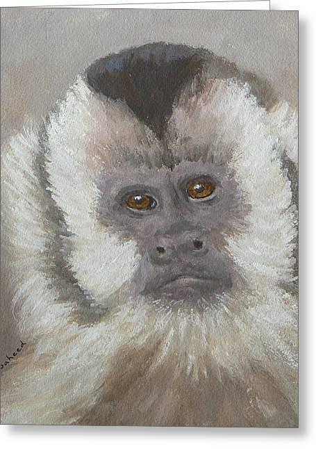 Saheed Greeting Cards - Monkey Gaze Greeting Card by Margaret Saheed