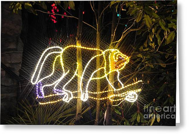 Christmas Lights Greeting Cards - Monkey Greeting Card by Mandy Judson
