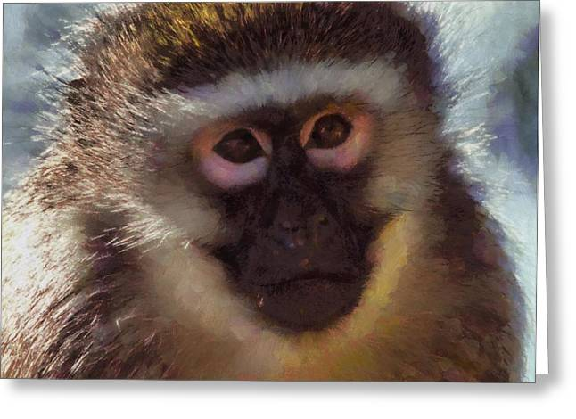 Old World Mixed Media Greeting Cards - Monkey Portait Painting Greeting Card by Dan Sproul