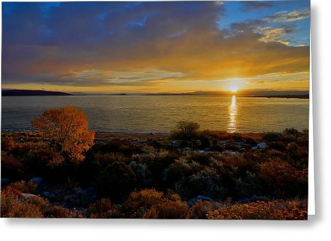 Beauty Mark Photographs Greeting Cards - Mono Lake Sunrise Greeting Card by Mark Whitt