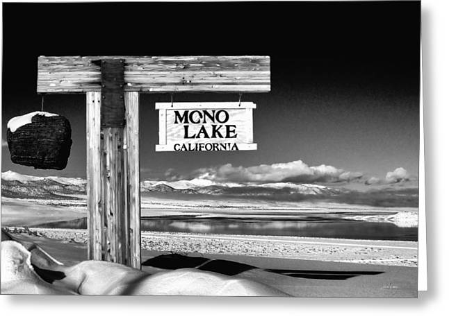 Tufa Greeting Cards - Mono Lake Vista Greeting Card by Cat Connor