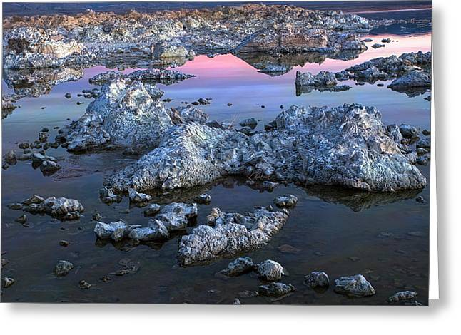 Mystical Landscape Greeting Cards - Mono Morning Greeting Card by Denise Dube