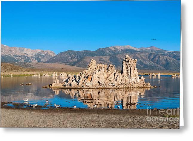 Calcium Greeting Cards - Mono Morning - Strange Tufa Towers of Mono Lake in California. Greeting Card by Jamie Pham