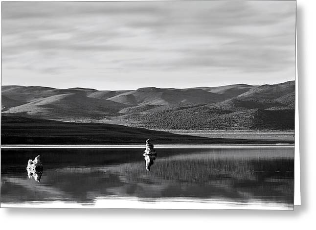 Mystical Landscape Greeting Cards - Mono Zones bw Greeting Card by Denise Dube