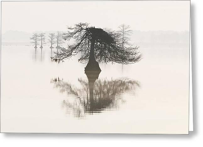 Wildlife Refuge. Greeting Cards - Monochromatic Morning on Lake Mattamuskeet  Greeting Card by Bill Swindaman