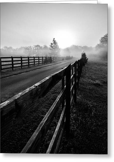 Dazed Greeting Cards - Monochrome Fog Path Greeting Card by Shelby  Young