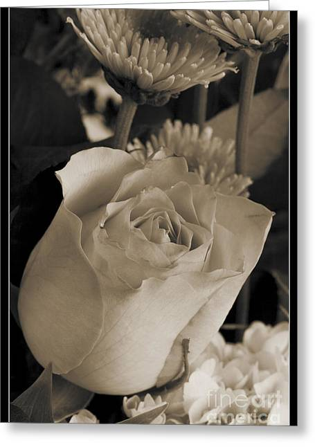 Buds Framed Prints Greeting Cards - Monochrome Rese Bud 8033.01 Greeting Card by M K  Miller